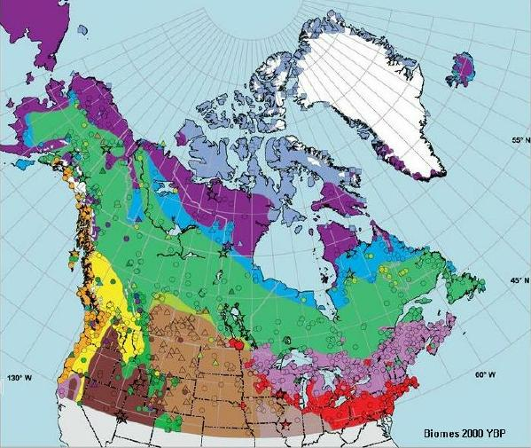 it is interesting to compare these maps with the ecoclimatic map of canada prepared by the ecoregions working group of the canada committee on ecological
